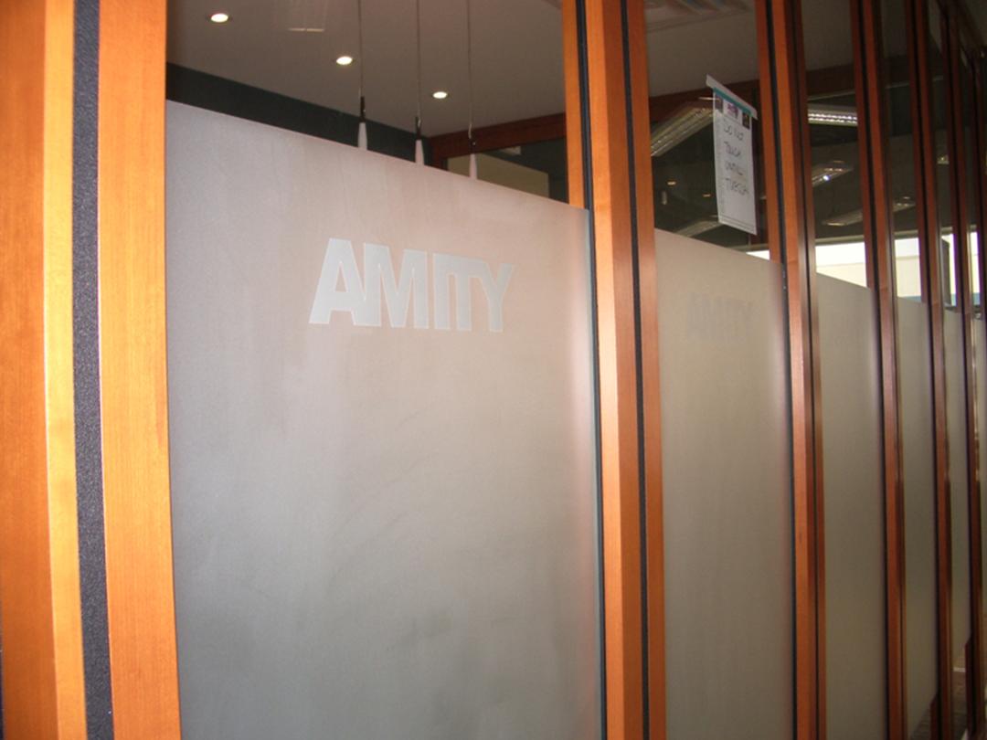 Vinyl-Amity